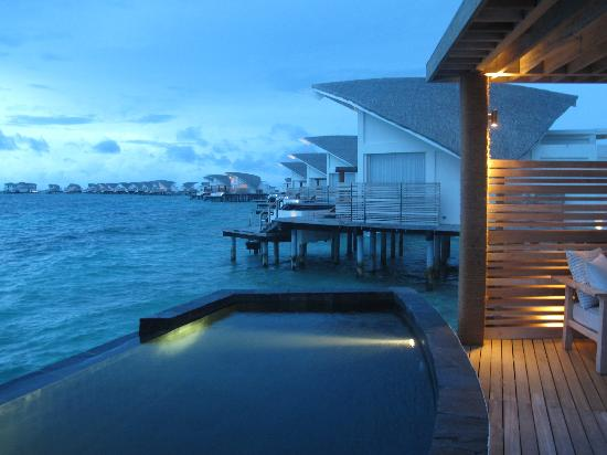 Viceroy Maldives: view from back of the villa