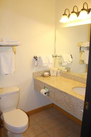 Best Western Devils Tower Inn: Room 206 - Bathroom