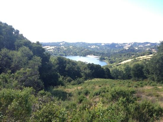 Lafayette Reservoir : View from Rim Trail