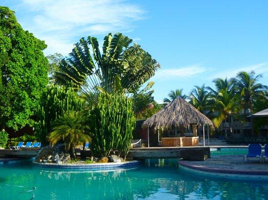 Talanquera Beach Resort: trees