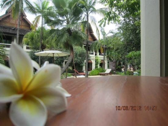Khum Phaya Resort & Spa, Centara Boutique Collection: View from our room