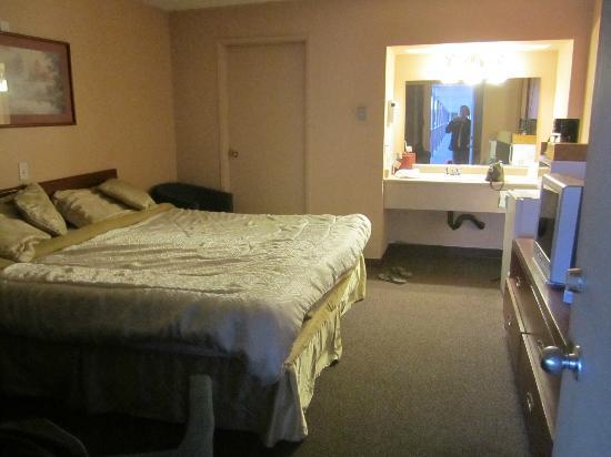 Premier Mountain Lodge & Suites : King room