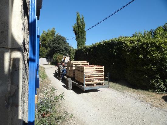 Mas de Grasset : Trafic a l'exterieur du gite la ferme
