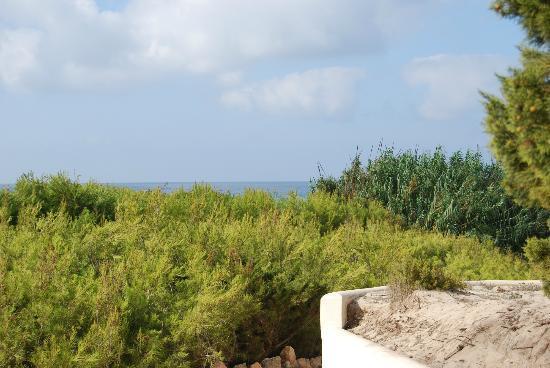 Las Dunas Playa: Vistas desde el apartamento