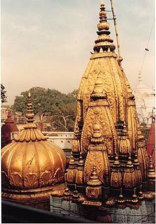Image result for kashi vishwanath temple