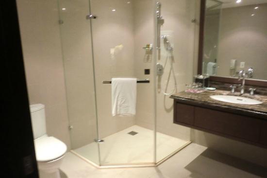 Hotel Kuva Chateau: Shower and hand basin