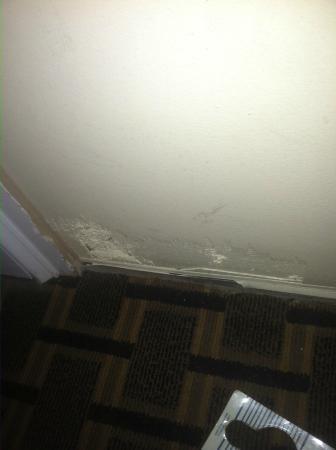 Creekside Lands Inn: inside of room door