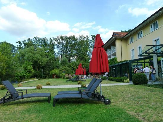 Steigenberger Hotel Deidesheim: Garten des Hotels