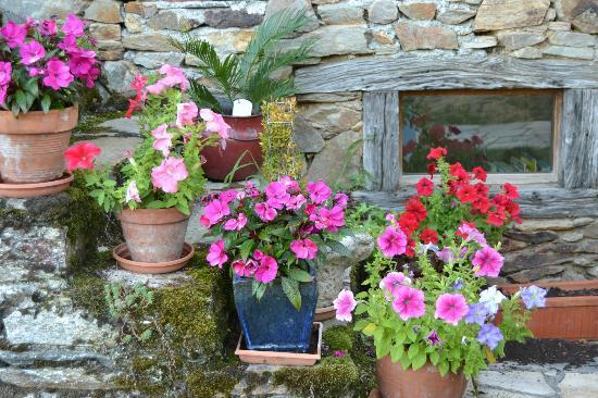 Barbiel: flowers near the door way