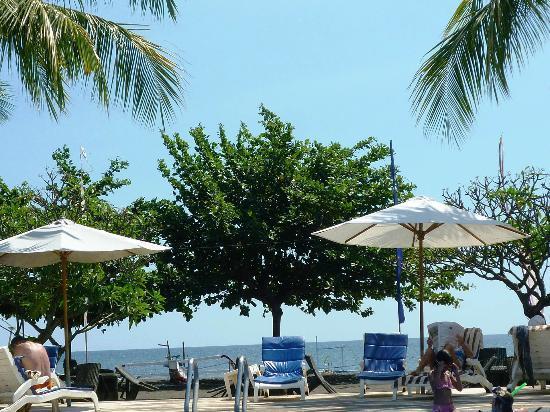 Aneka Lovina Beach Hotel: piscine