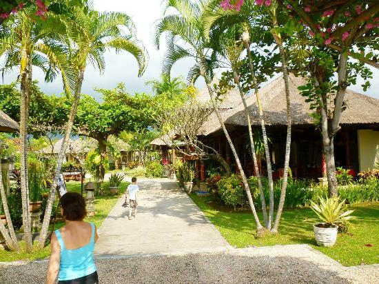 Aneka Lovina Beach Hotel: allée