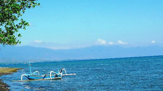 Aneka Lovina Beach Hotel: vue de la plage