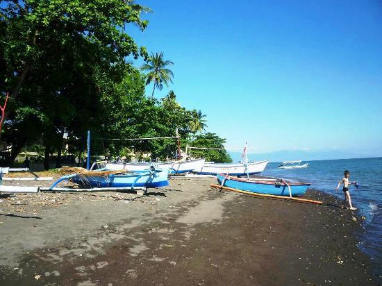 Aneka Lovina Beach Hotel: plage