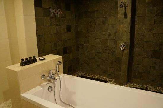 Sri Phala Resort & Villa: the bathroom