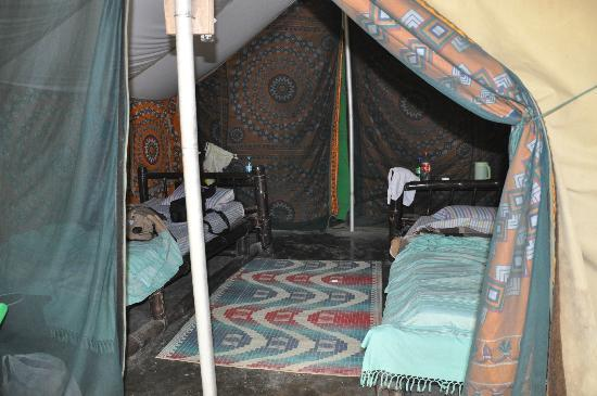 Nameri Eco Camp: Our tent