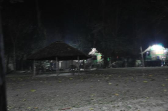 Nameri Eco Camp: The campsite at night