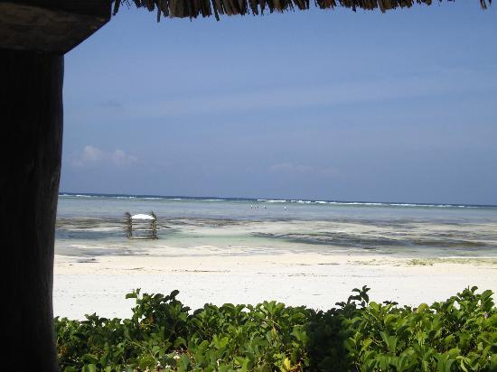 Breezes Beach Club & Spa, Zanzibar: Beach area