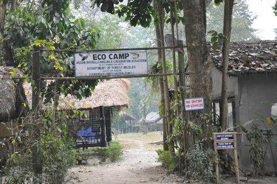 Nameri Eco Camp: The entrance