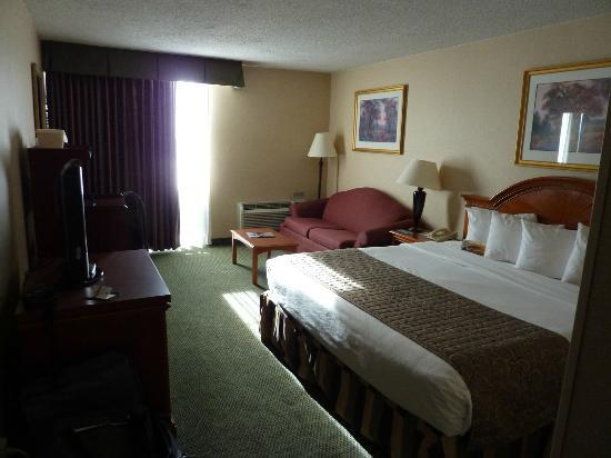 Quality Inn Detroit - Troy: chambre