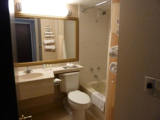 Quality Inn Detroit - Troy: salle de bain