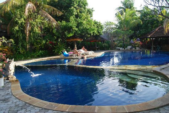 Puri Bali Hotel: Piscine et bar