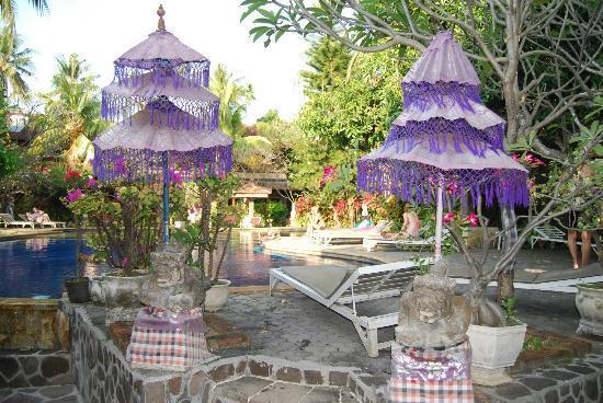 Puri Bali Hotel: piscine
