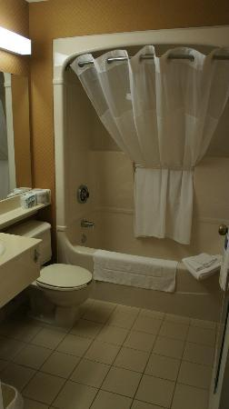 Comfort Inn Magnetic Hill: Tub