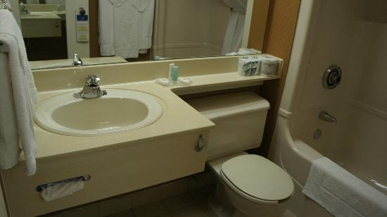 Comfort Inn Magnetic Hill: Bathroom