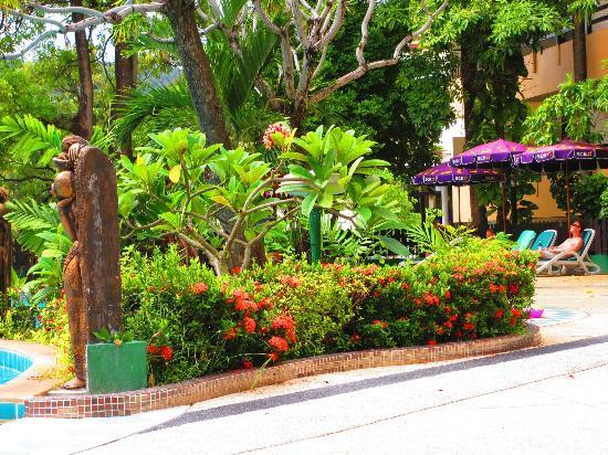 パトン ロッジ ホテル, pool side