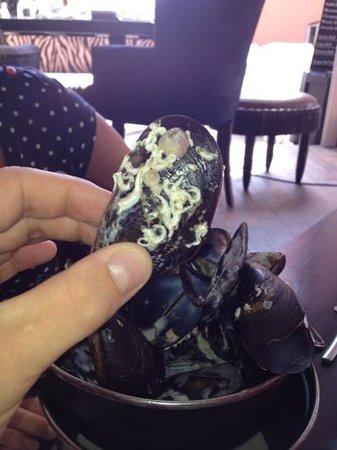 La Plazza: Nettoyage des moules !!!