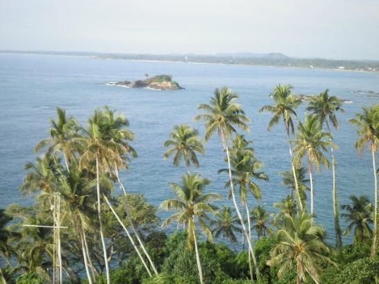 ริเวอร์ พาราไดซ์: Ausflug zur Leuchtturm Insel