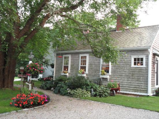 Mulberry Tree Inn: b+b