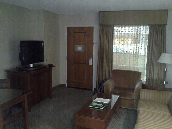 Embassy Suites by Hilton Dulles - North/Loudoun: TV room