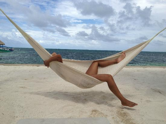 Victoria House Resort & Spa: In the Hammock