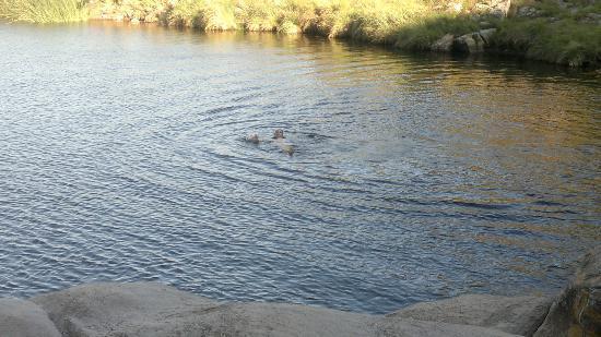 """La Falda, Argentina: nadando en la olla """"natural"""" de la cascada de Olaén"""