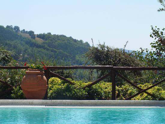 Agriturismo Val di Boccio: Panorama dalla piscina