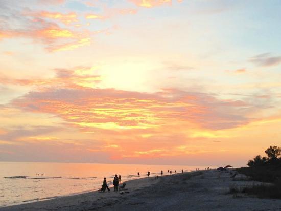 Mitchell's Sandcastles: Sunset