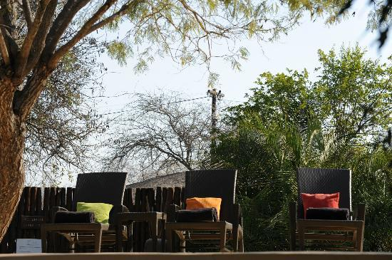 Kambaku Safari Lodge: L'heure du farniente...