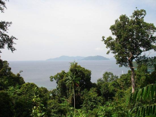 Bunga Raya Island Resort: View from Flying Fox platform