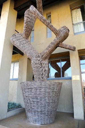 Graskop Hotel: Le cactus qui permet d'identifier l'entrée