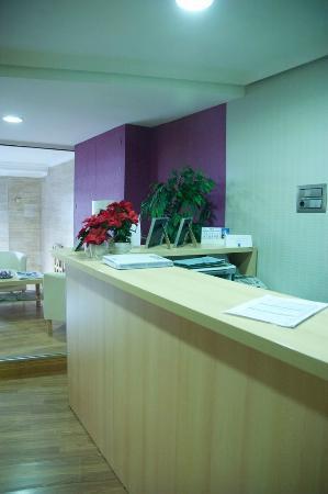 Hotel Altozano: Recepción
