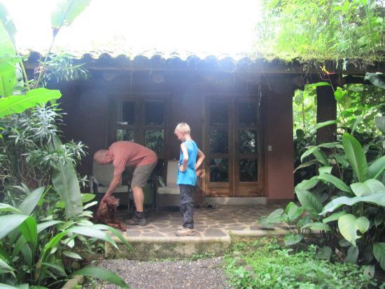 Hacienda La Isla Lodge: kamer met terras