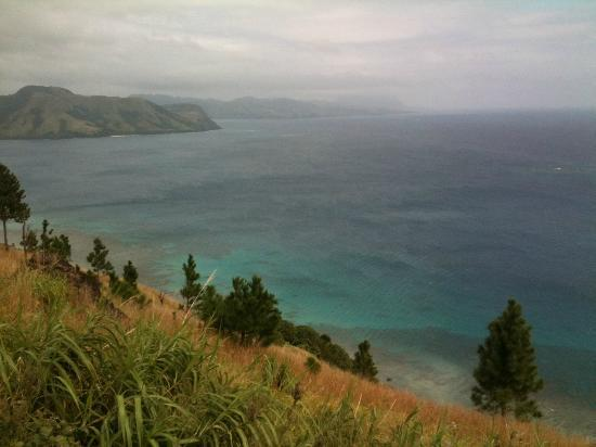 Matana Beach Resort - Dive Kadavu: View from track behind resort