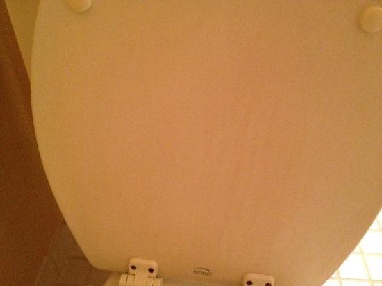 Tidewater Inn: drippy stains on inside of toilet seat cover