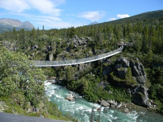 Skagway Suspension Bridge Tour