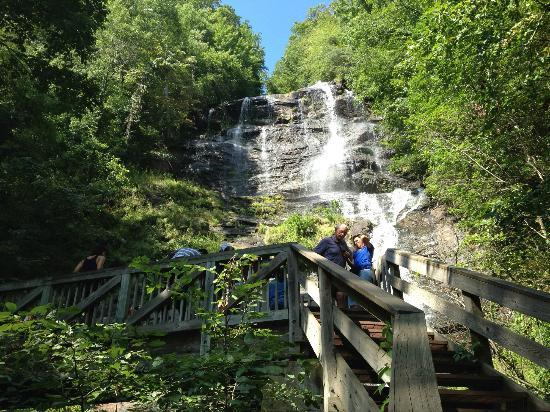 Amicalola Falls State Park: The view from the base of the falls.