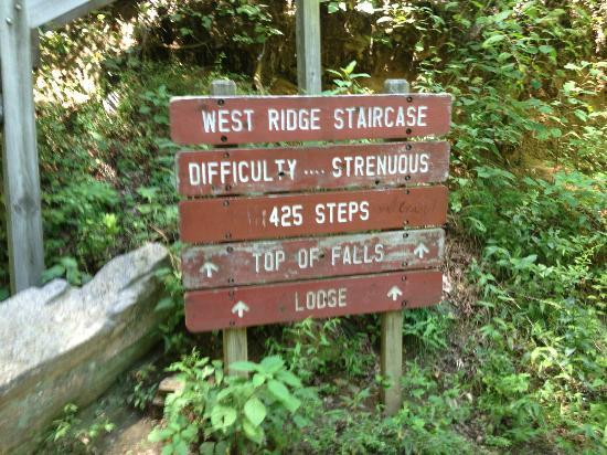 Amicalola Falls State Park: The sign at the base of the falls leading to the top.