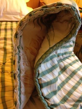 โรงแรมฟร๊องซอิเฟล: edge of comforter