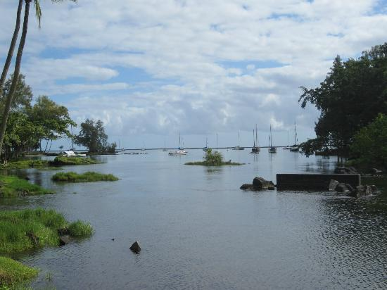 Hilo Seaside Hotel: View from street