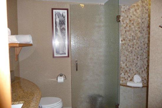 High Peaks Resort : Bathroom